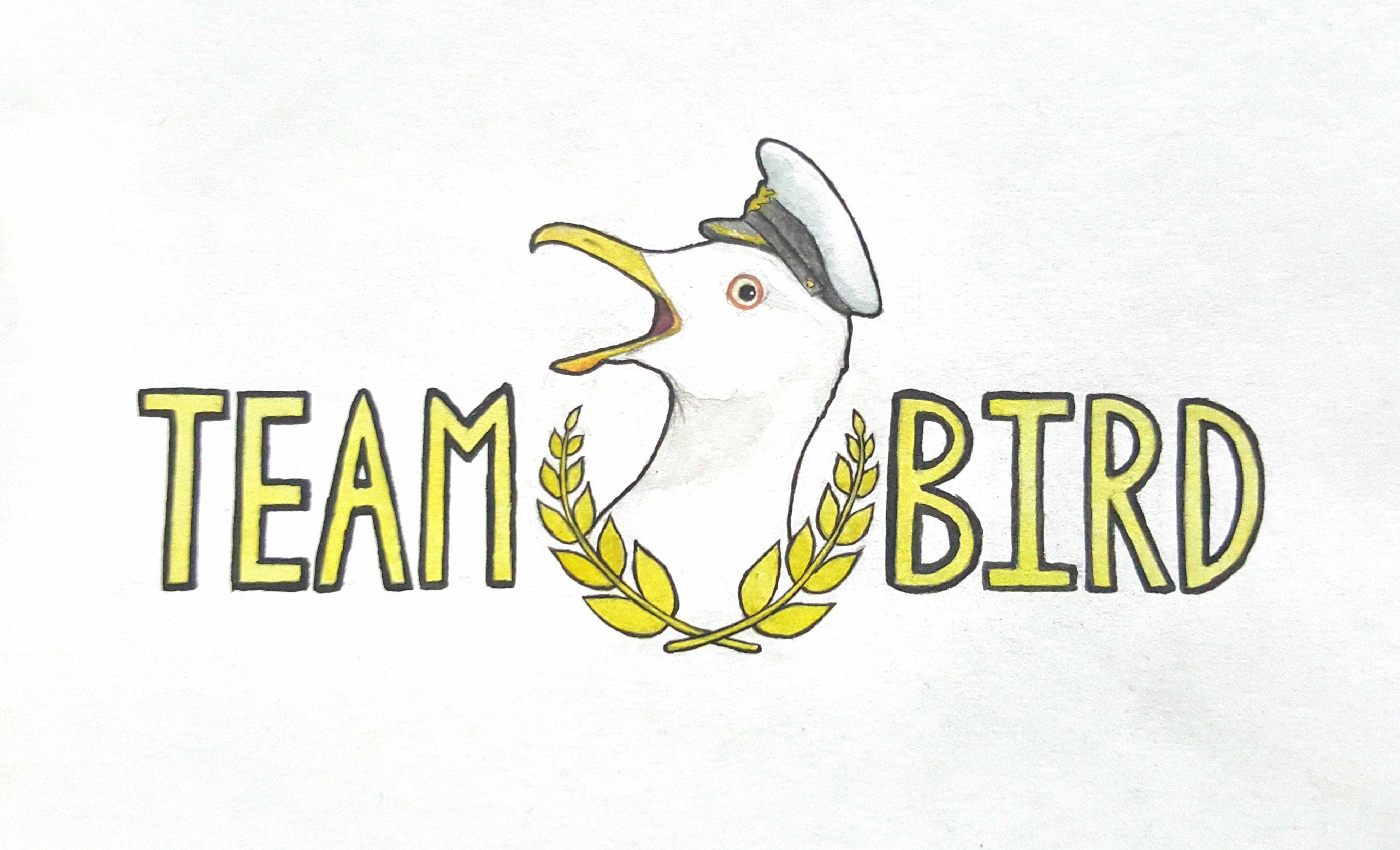 teambird2.jpg