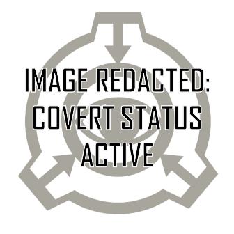 redacted_covertstatus.PNG