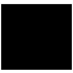 logo_250.png