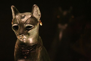Cat049.jpg