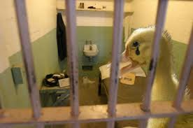 duck-prison.jpg
