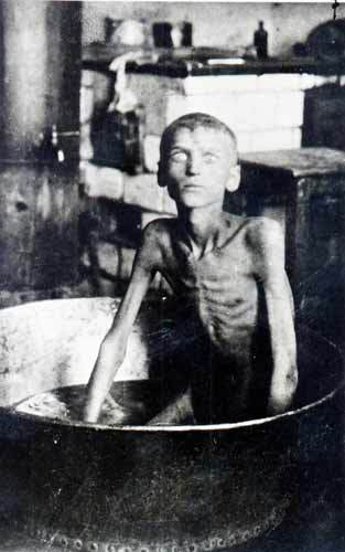 an analysis of the chinese holocaust by the japanese during the 1920s and 1930s Chinese or japanese persons  during this time, japanese  with the presence of foreign invaders such as the japanese beetle, the 1920s and the 1930s mark an.