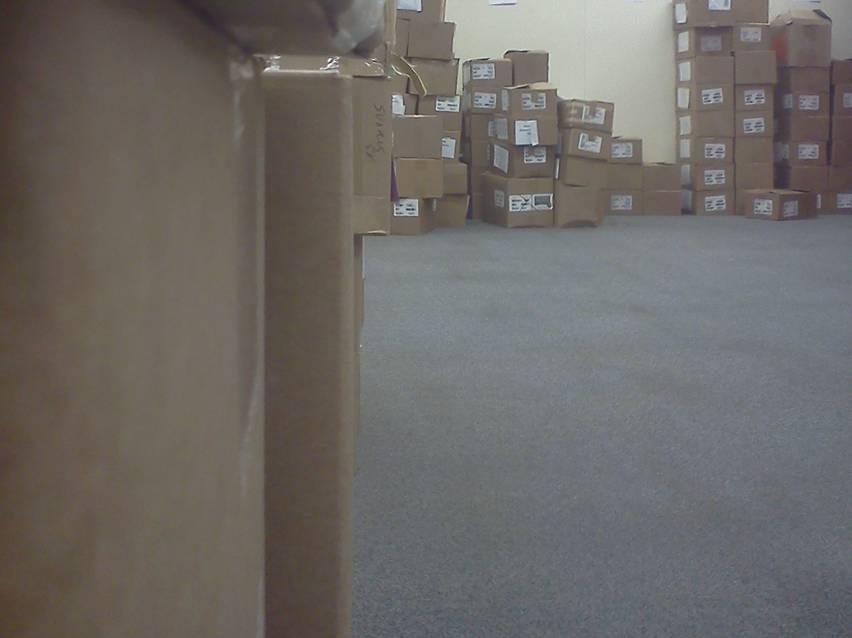 Особи SCP-1355-1 среди идентичных коробок.|width=300px