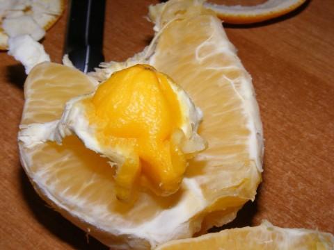 orangee.jpg