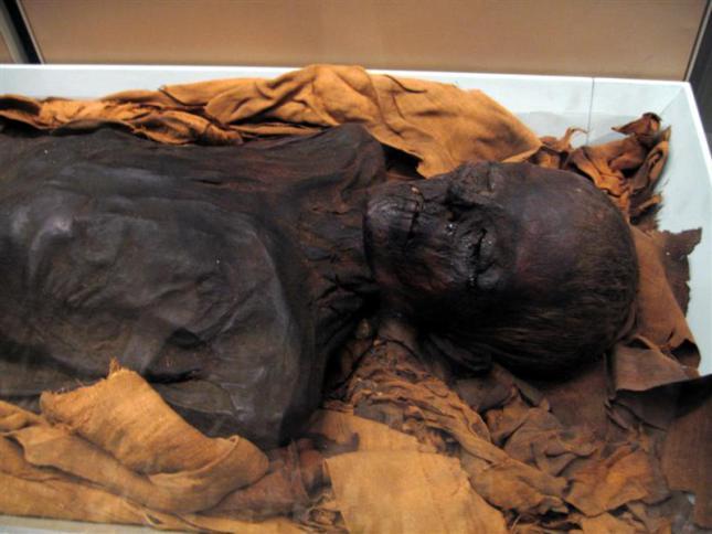 mummified.jpg