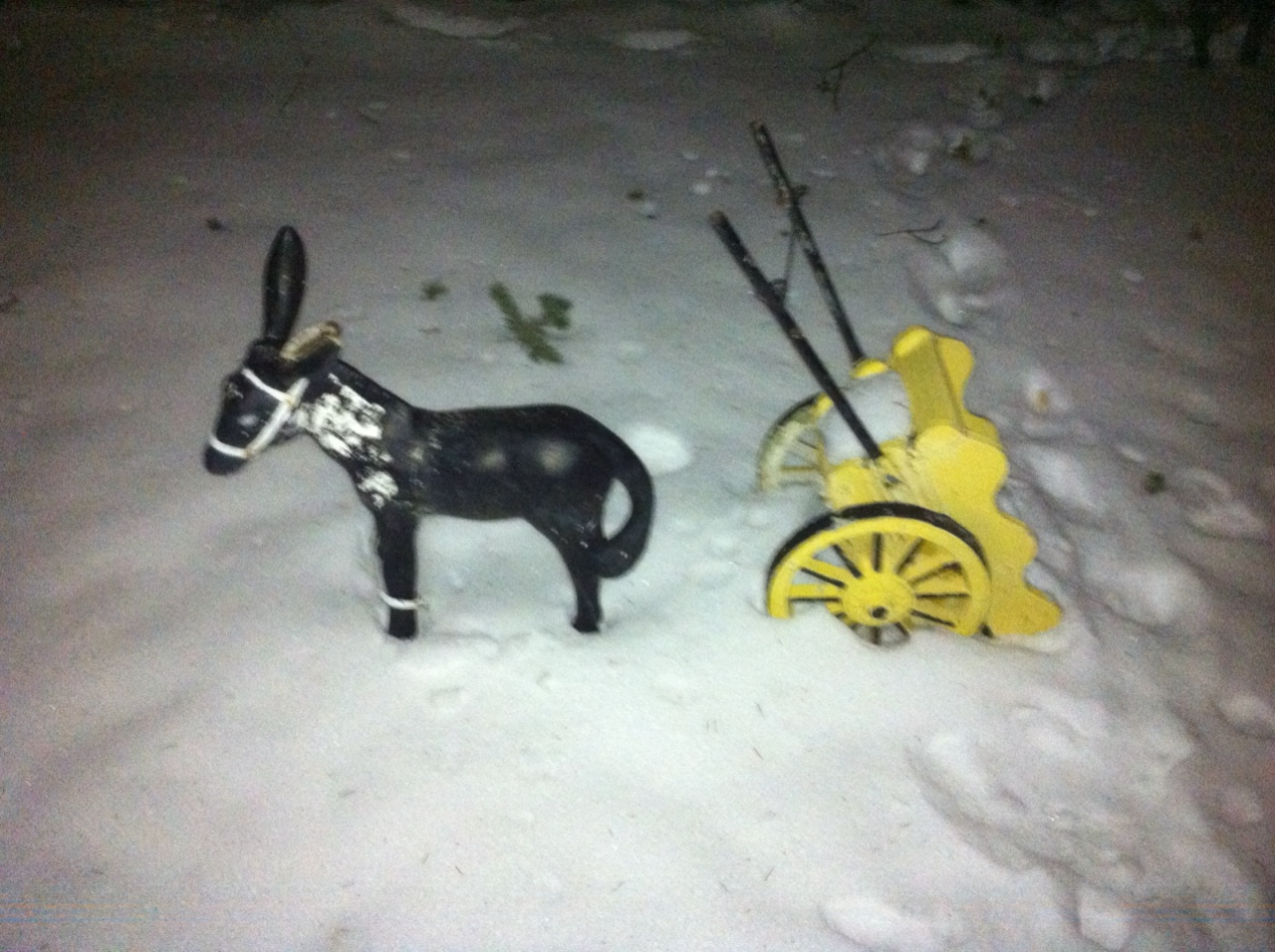 snowdonk.jpg