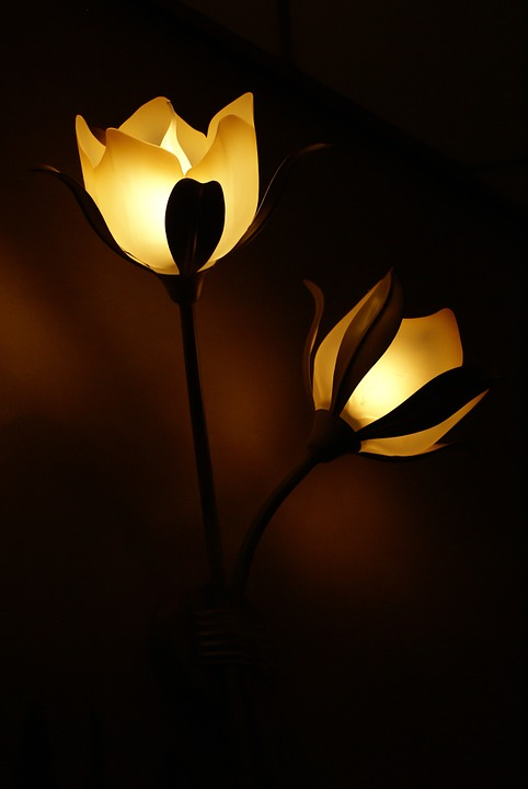 Dark-Lamps-Wall-Lamp-Light-Lighting-Flower-Lamp-558122.jpg