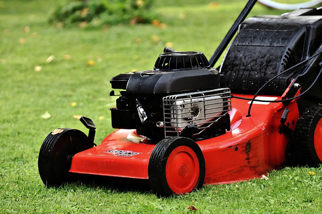 ecto-lawn-mower.jpg