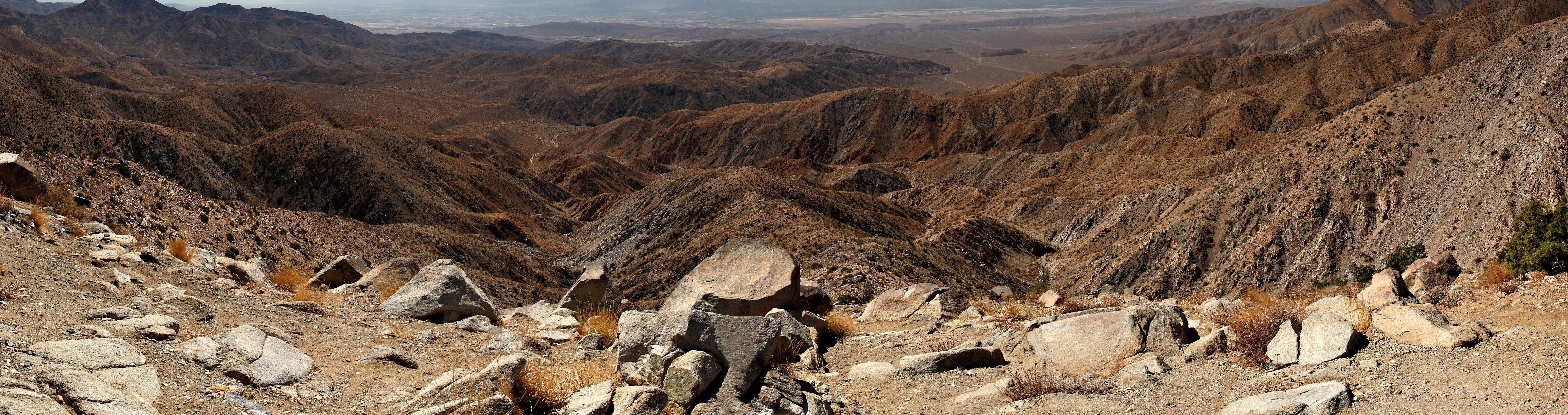 Joshua_tree_keys_view_pano_more_vertical-1.jpg