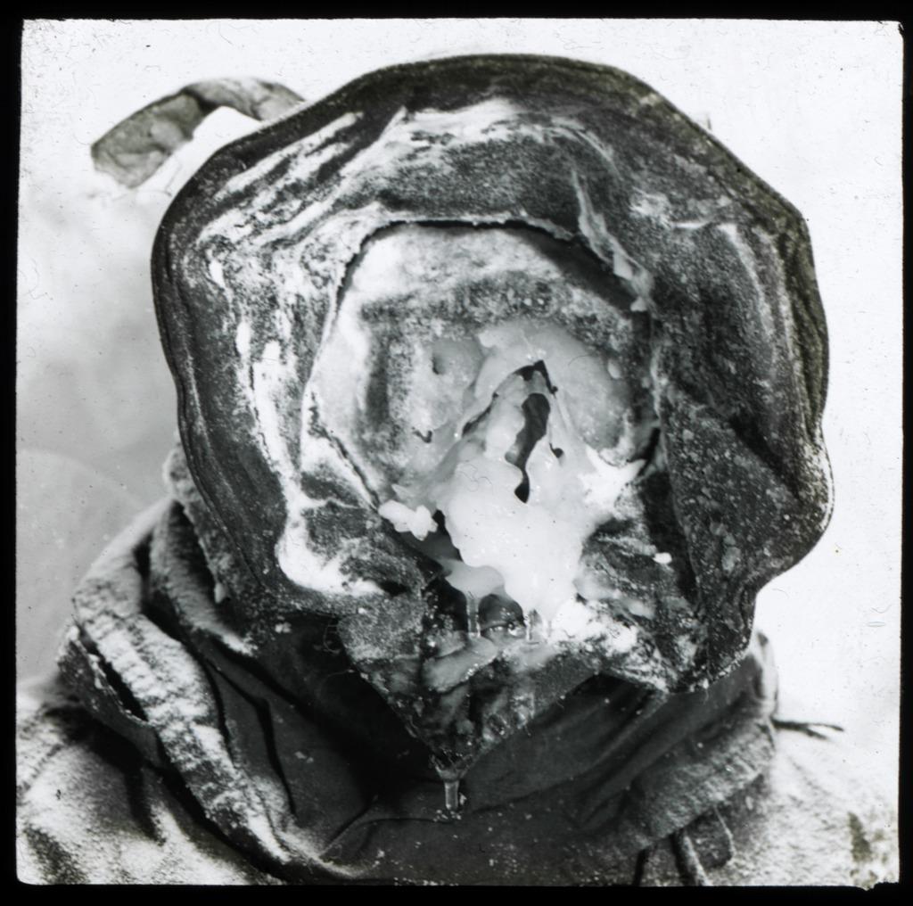 antarctic_richards.jpg