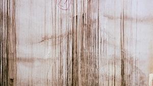 stain2.jpg