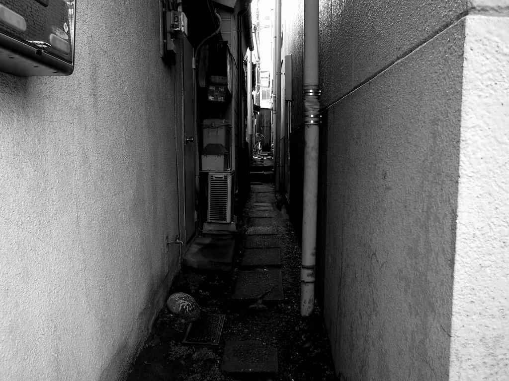 Hanabusa2.jpg