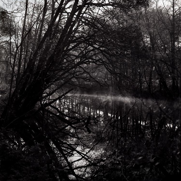 scpblackwater.jpg