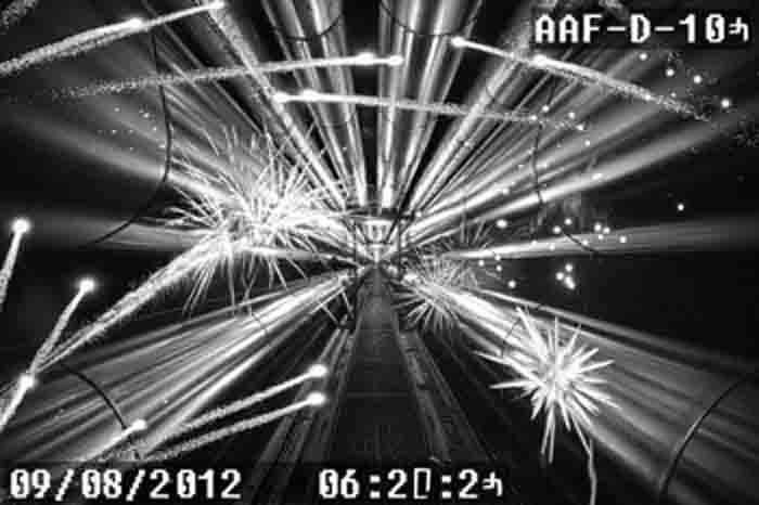 AAFD-2.jpg