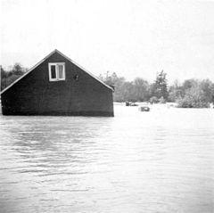 240px-Hurricane_Hazel_--_house1.jpg