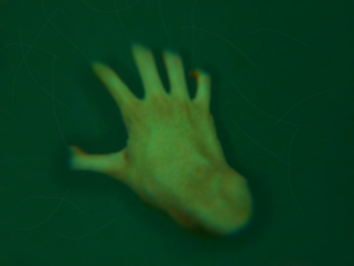 hand_comp.png