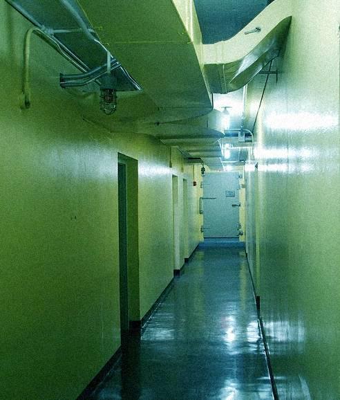 fishcorridor.jpg