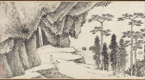 araucaria_trees